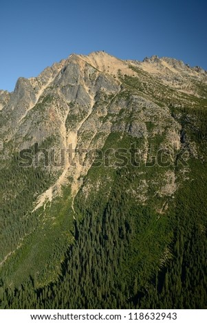mountain and forest of north cascades national park, washington, usa