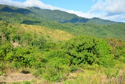 Mountain and trees scenic view at Dingalan, Aurora, Philippines
