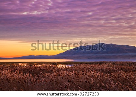 Mountain at Dusk with Reeds in the Foreground