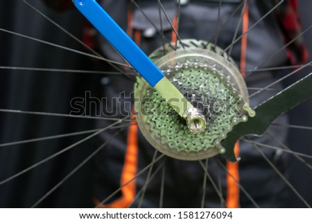 mountain bike repair. Bike mechanic in the workshop. Replacement of the rear wheel cassette. Dirty wheel, hub and spokes and worn folding tire. Professional tool for working with a bicycle.