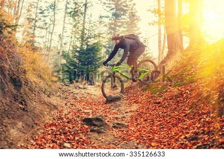 mountain biker riding in autumn forest