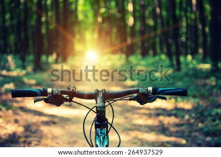 Mountain biking down hill descending fast on bicycle. View from bikers eyes. Image ID: 251873872 #264937529