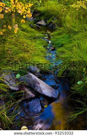 Mountain Brook in Fall