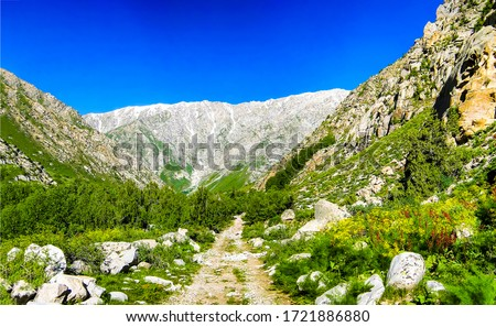 Mountain canyon trail view. Trail in mountains. Mountain trail landscape