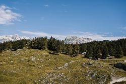 Mountain cottage hut or house on hill Velika Planina alpine meadow landscape. Eco farming. Travel destination for family hiking. Kamnik Alps, Slovenia. Big Plateau.