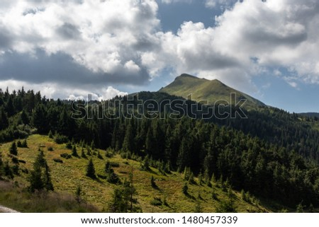 Mountain covered with grass towering above the forest against the sky with clouds. Carpathians, Ukraine. #1480457339