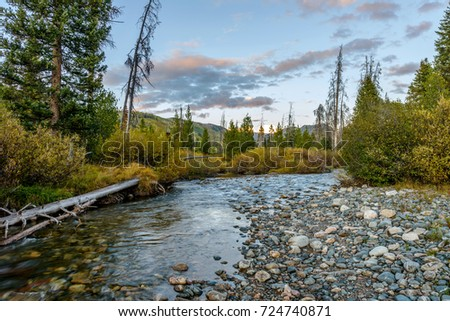 Mountain Creek - An autumn evening at Middle Fork Elk River, Routt National Forest, near Steamboat Springs, Colorado, USA.