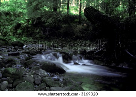 Mountain creek black forest germany stock photo