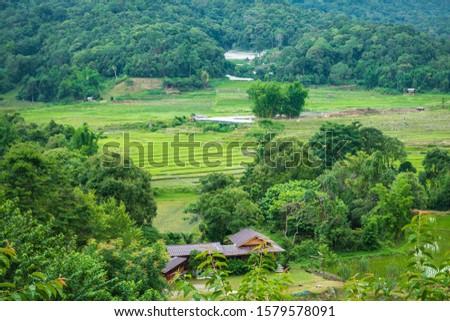 Mountain farmland Rice terraces at Mae Klang Luang, Doi Inthanon, Chiang Mai, Thailand #1579578091