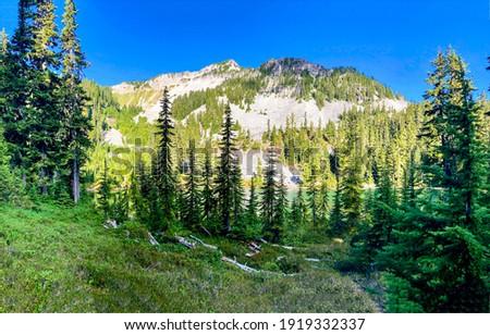 Mountain forest green peak view. Green mountain landscape. Mountain green landscape. Mountain forest peak view