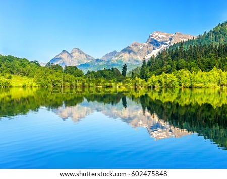mountain forest lake reflection