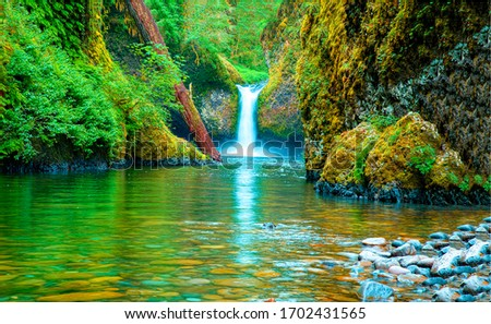Mountain forest lake waterfall view. Waterfall pool in mountains
