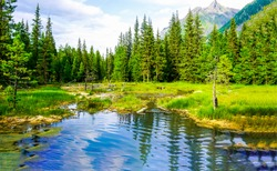 Mountain forest pond water landscape.  Forest pond in mountains. Mountain forest pond view