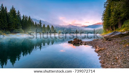 mountain forest river fog...