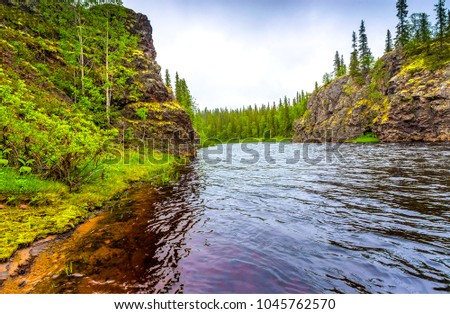 Mountain forest river landscape #1045762570