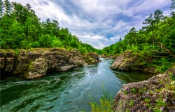 Mountain forest river landscape. Forest river flowing panorama. Mountain forrest river view