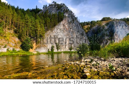Mountain forest river landscape. River in mountain forest. Mountain river rock view. Mountain forest river view