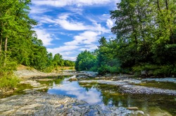 Mountain forest river landscape view