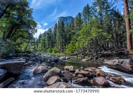 Mountain forest river rocks landscape. Forest river in mountains. River rocks water flow