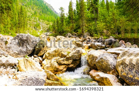 Mountain forest river rocks view. River rocks in mountain forest