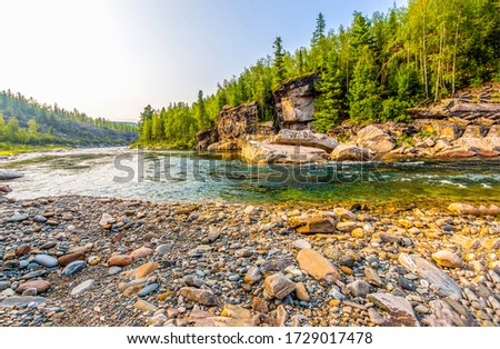 Mountain forest river shore view