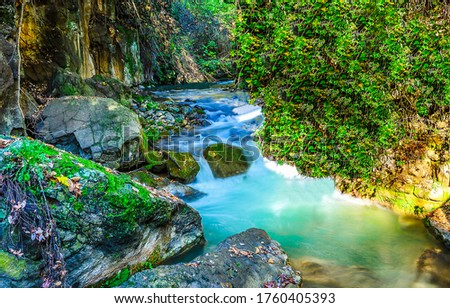 Mountain forest river steram water. River stream in mountains