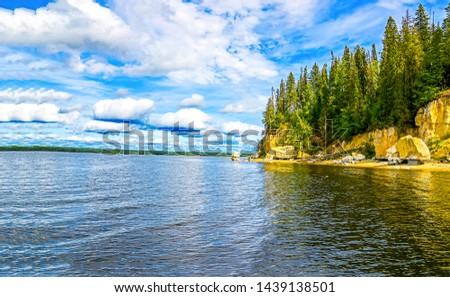Mountain forest river water landscape. River water at forest rock. Forest river rock trees. Mountain river water landscape