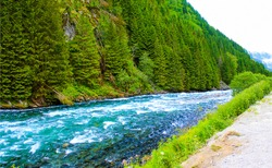 Mountain forest river wild view. Mountain river wild landscape. River wild in mountains. Mountain river view