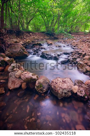 Mountain forest river with rapids