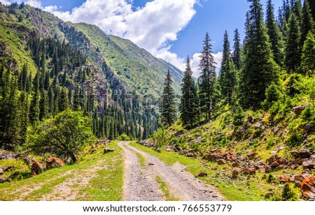 Mountain forest road landscape #766553779