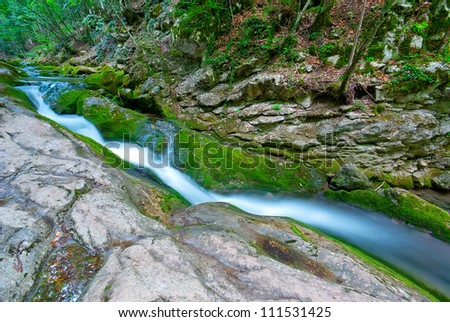 Mountain forest stream flowing between the rocks