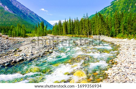 Mountain forest valley river view. Mountain forest river flow. Mountain river landscape. Mountain river valley landscape