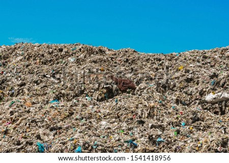 Mountain garbage, large garbage pile, degraded garbage. Pile of stink and toxic residue. These garbage come from urban areas, industrial areas. Consumer society Cause massive waste.