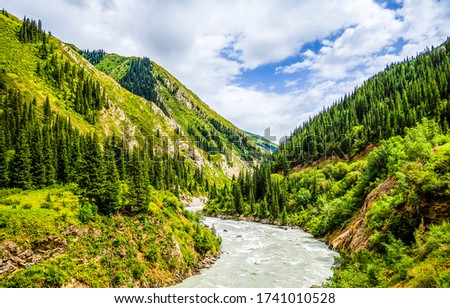 Mountain green forest river landscape. River wild in mountains