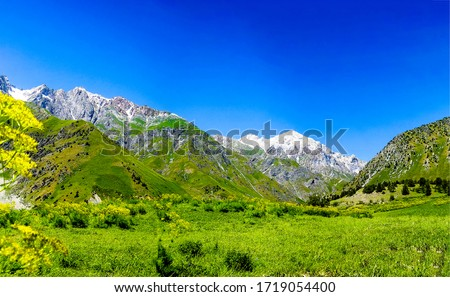 Mountain green valley landscape view. Green mountain hill valley. Mountain peak snow view