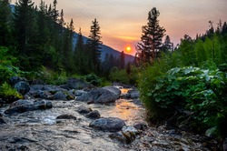 Mountain green valley river creek landscape. Сreek in mountain valley. Mountain valley creek. Mountain valley landscape panorama.