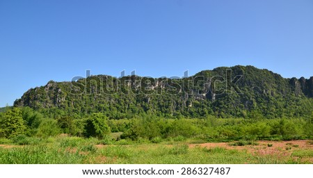 Mountain greet forest texture background