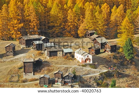 mountain hamlet of wooden chalets above the exclusive resort of Zermatt in the swiss alps. the surrounding larches have turned golden with the colors of fall