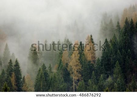 Mountain haze #486876292