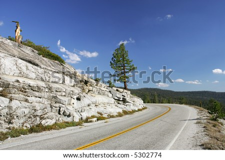 Mountain highway in Yosemite National Park, California