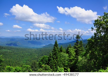 mountain hills and forest