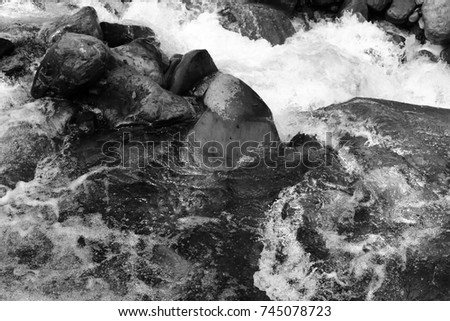 Mountain himalayan waterfall close up with impetuous water flow and water foam and stones black and white. #745078723