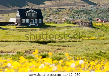 mountain house surrounded by yellow flowers