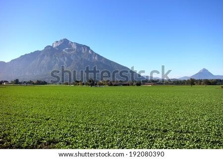 Mountain in Salzburg