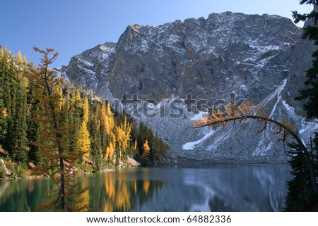 Mountain Lake and Autumnal Larches
