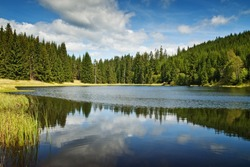 mountain lake and forest panorama