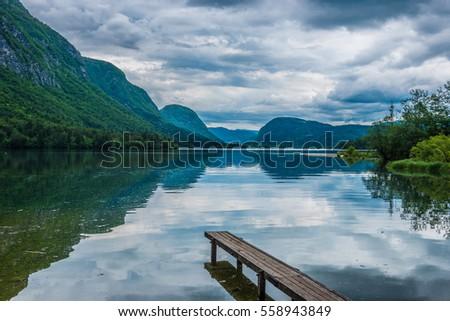 Mountain Lake Bohinj in Julian Alps, Slovenia #558943849
