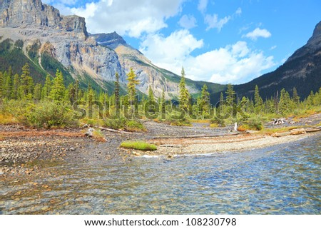 Mountain lake coast landscape in Rocky Mountains (Yoho National park. Alberta. Canada)