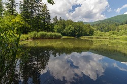 Mountain lake in forest. Water surface reflecting landscape and sky with clouds. Persevered and protected nature in Poloniny national park, eastern Slovakia.