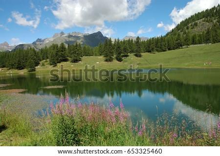 mountain landscape #653325460
